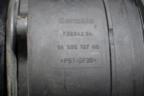 _DSC0052